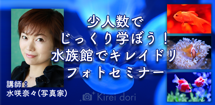 Kireidori_水族館撮影セミナー