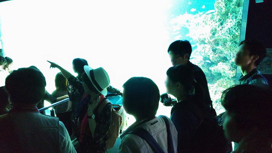 講師による撮影レッスンin水族館