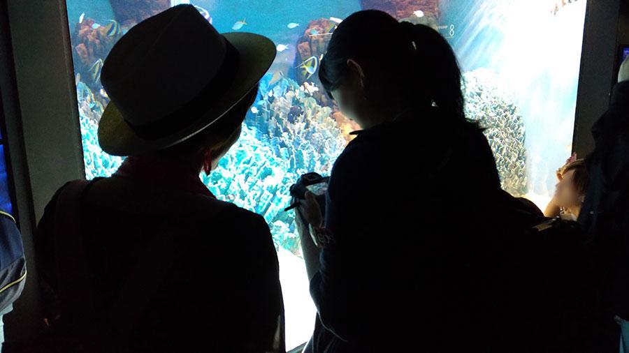 先生に寄る撮影のコツをレクチャー_水族館撮影1
