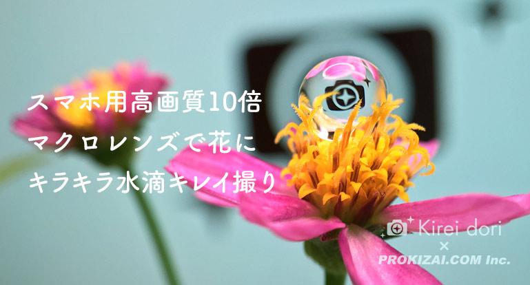 花に綺麗な水滴の写真の撮り方