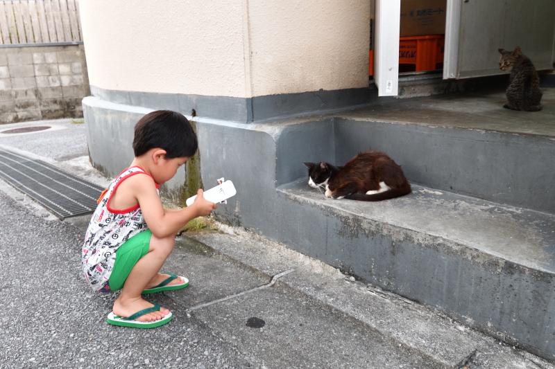 子どもがスマホ撮影している画像